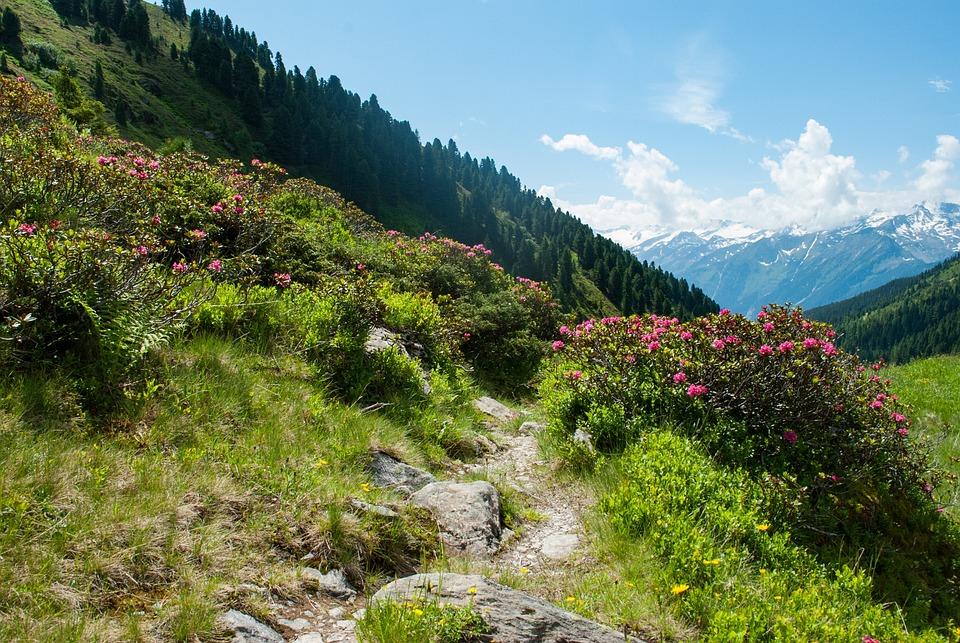 Mountains, Hiking, Nature, Landscape, Alpine