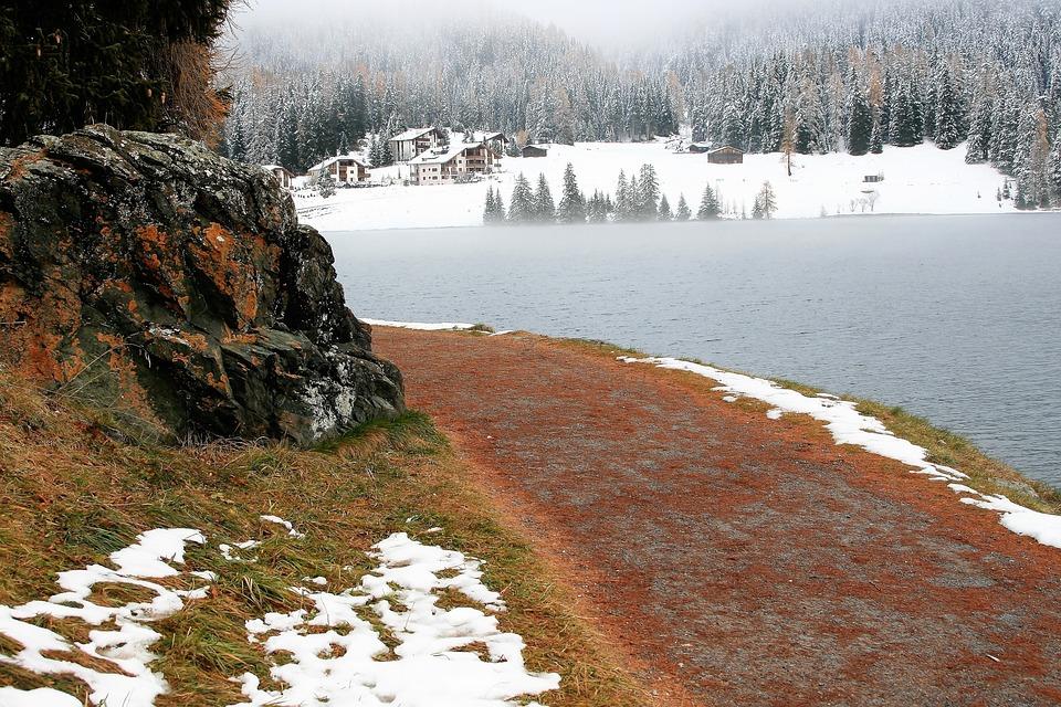 Rudy, Snow, Spacer, Lake, Alpine, Davos, Winter