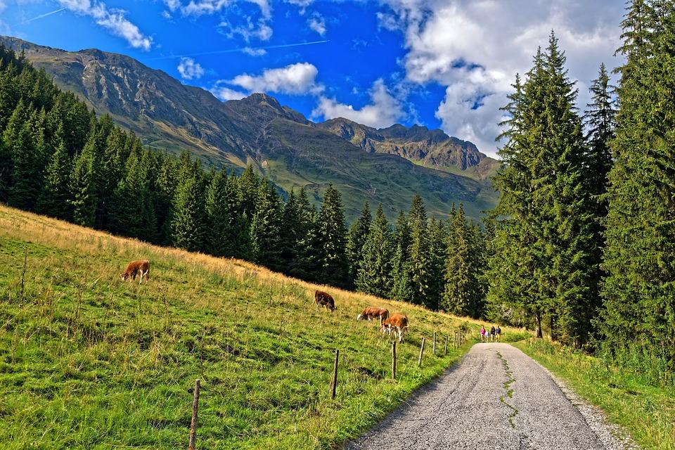 Mountain, Trail, Mountains, Landscape, Nature, Alpine