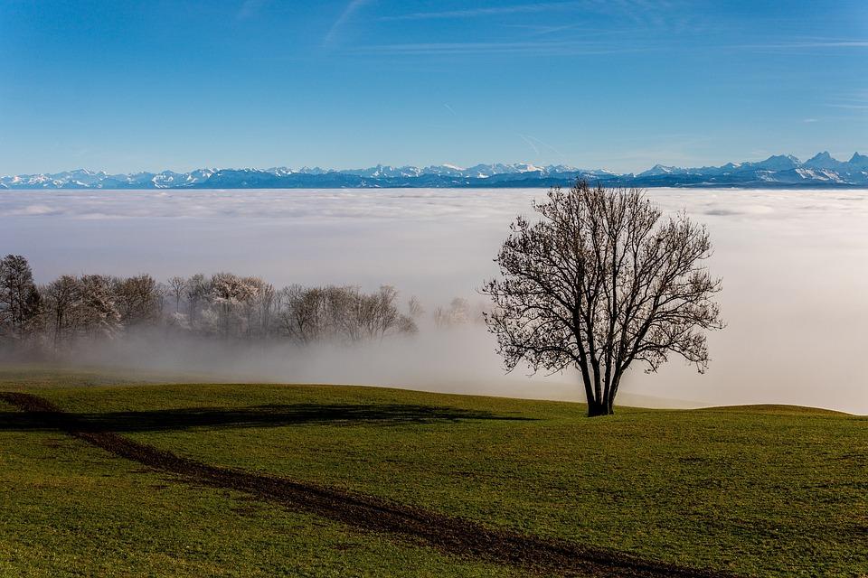 Switzerland, Alpine, Alps, Fog Line, Mountains