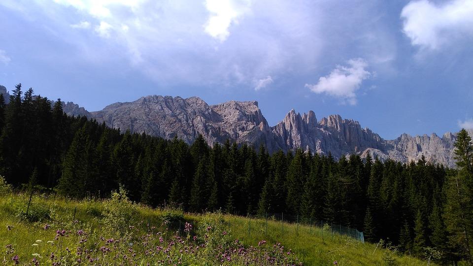Rose Garden, Alpine, Italy, Blue, South Tyrol