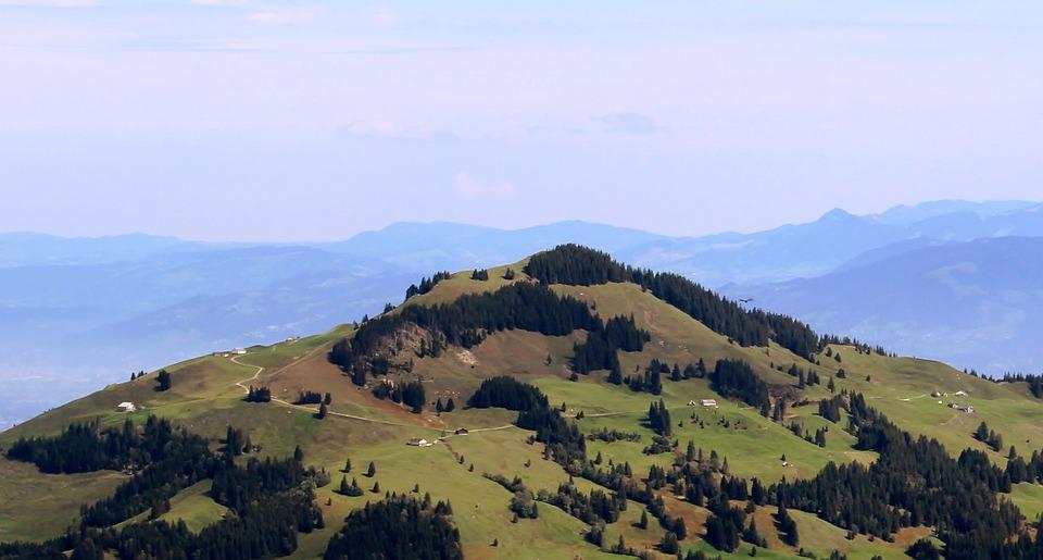 Mountains, Alpine, Swiss Alps, Ebenalp, Forests, Green