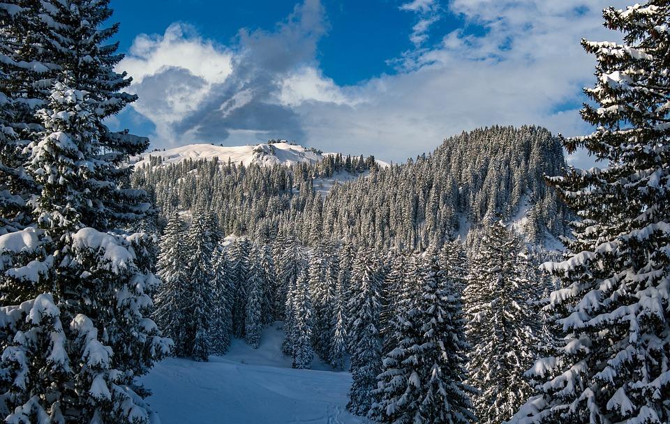 Hochybrig, Schwyz, Switzerland, Alpine, Nature, Summit