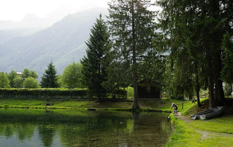 Alps, Tree, Lake, Europe, Swiss, France, Montblanc