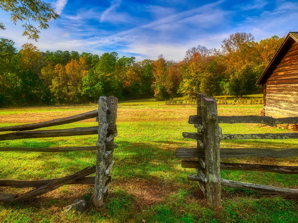 North Carolina, America, Fall, Autumn, Gate