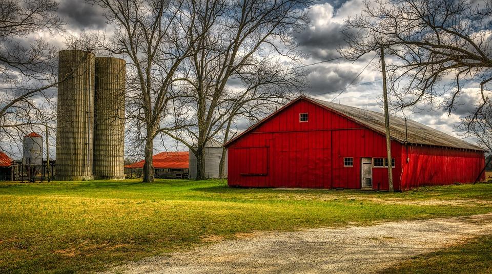 Georgia, America, Landscape, Scenic, Farm, Barn, Silos