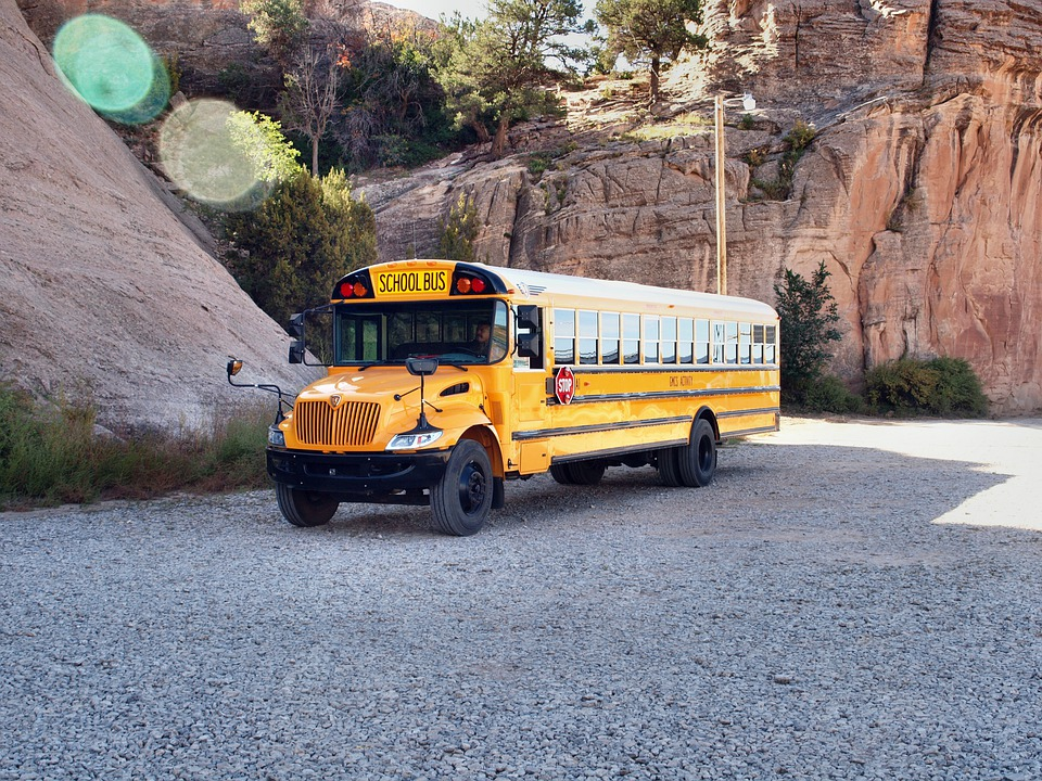School Bus, Usa, America