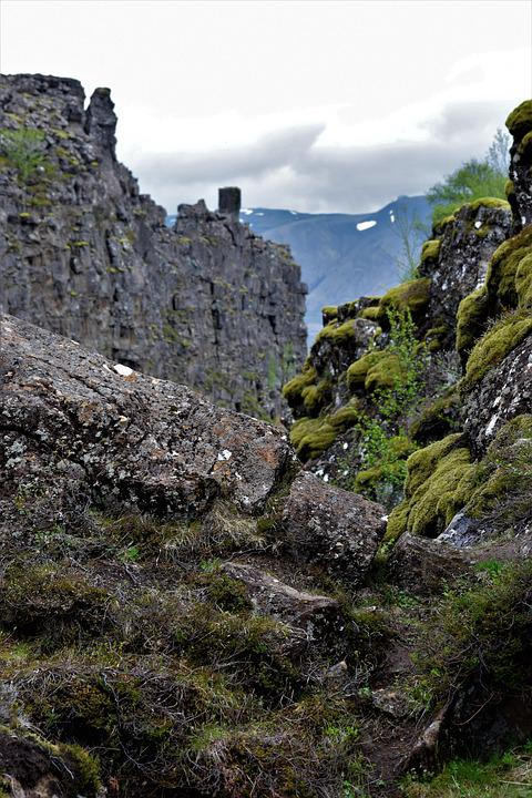 Moss, Moody, Rock, Cliff, Ancient, Nature