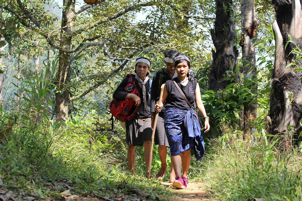 Woman, Forest, Ancient, Village, Girl, Hiking, Person