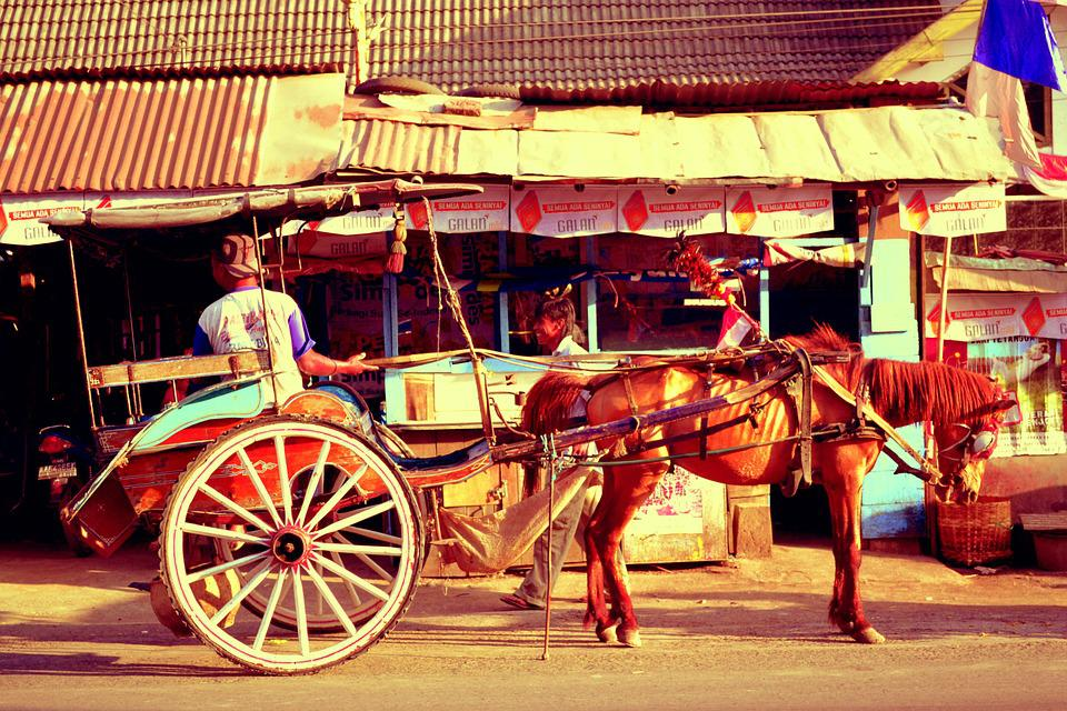 Horse Carriage, Horse, Rural, Ancient, Historic