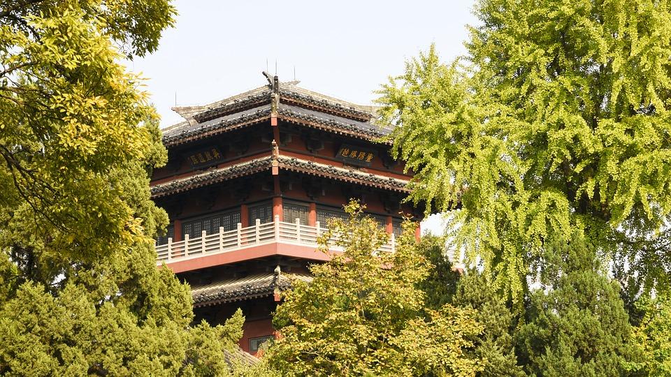 Xiaoyaojin, Ancient Times, Building, Park, Floor