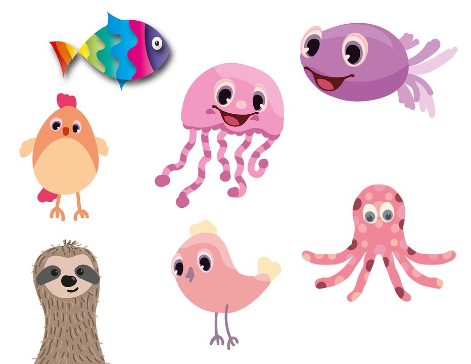 Fish, Squid, Hen, Sloth, Bird, Animal, Fresh, Calamari
