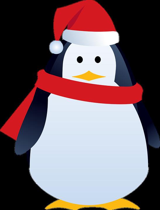 Santa, Christmas, Cute, Penguin, Animal