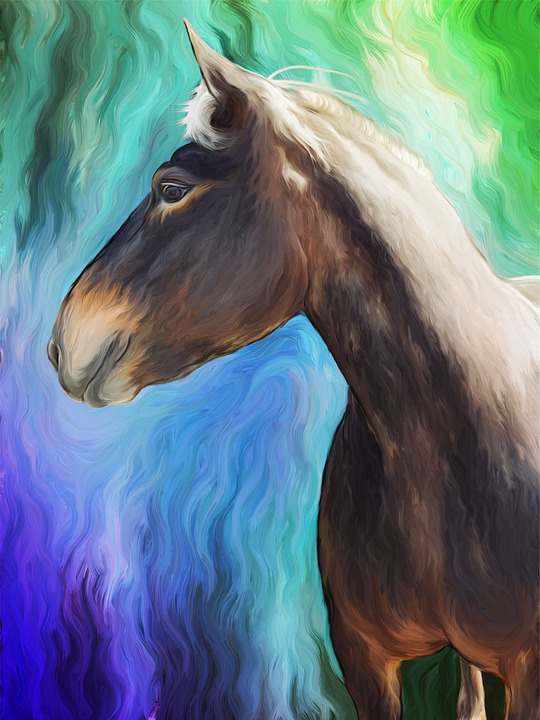 Horse, Color, Art, Ride, Animal