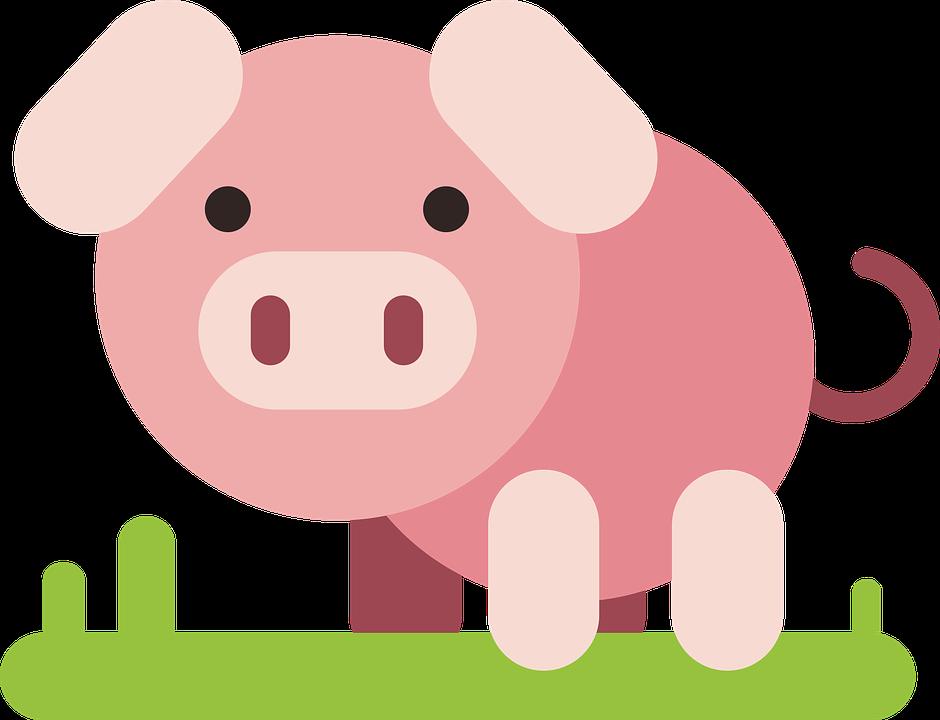 Pig, Animal, Comic, Comic Drawing, Drawing, Flat