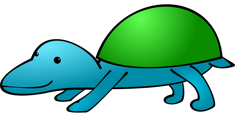 Animal, Creature, Fictional, Shell, Turtle, Green, Blue