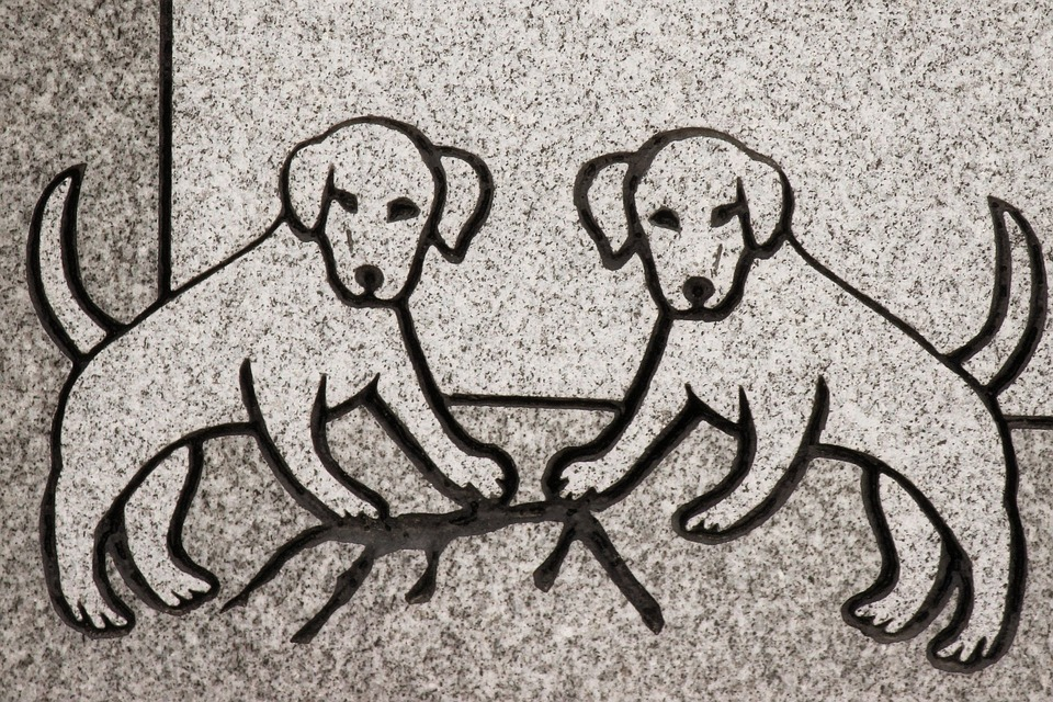 Carving, Dog, Animal, Headstone, Symbol, Detail