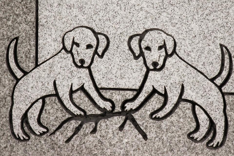 Carving, Dog, Animal, Headstone, Symbol, Detail
