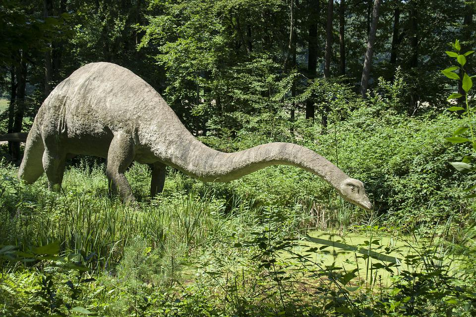 Dinos, Langhals, Animal, Dinosaur, Herbivores