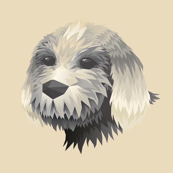 Head, Dog, Doggie, Retro, Animal