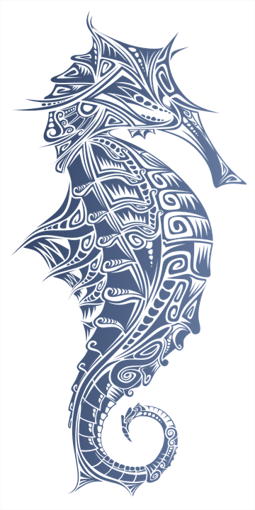 Hippocampus, Marin, Sea, Animal, Fish