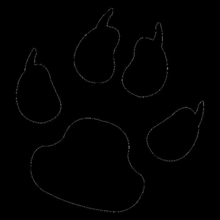 Footprint, Animal, Dog