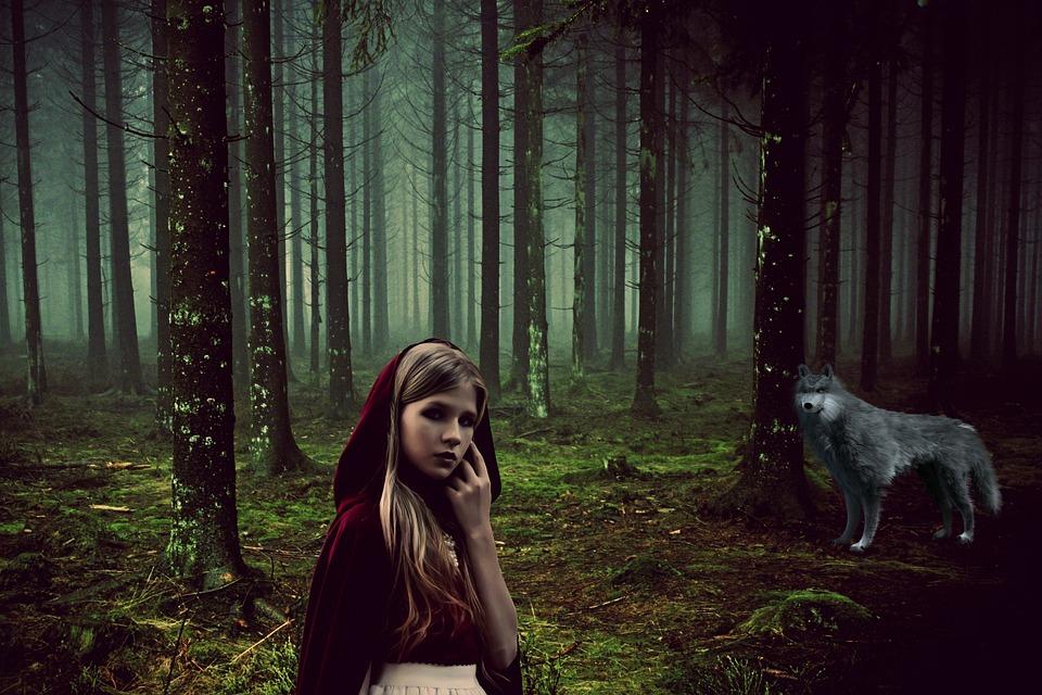 Girl, Fairy Tales, Rotkäppchen, Wolf, Animal, Forest