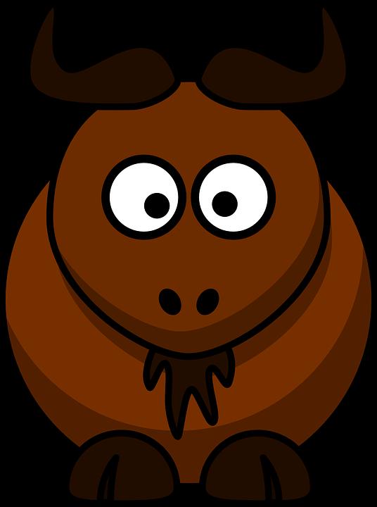 Goat, Bison, Buffalo, Animal, Mammal, Farm Animal