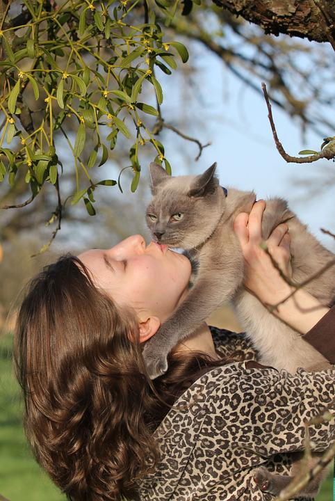 Portrait, Young Woman, Cat, Of Course, Human, Animal