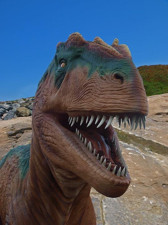 Dinosaurs, Jurassic, T-rex, Reptiles, Big, Animal