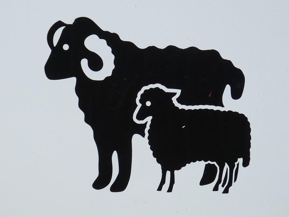 Shield, Characters, Sheep, Bock, Animal, Sylt, List