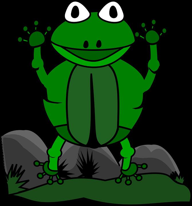 Animal, Cartoon, Clip Art, Frog, Nature