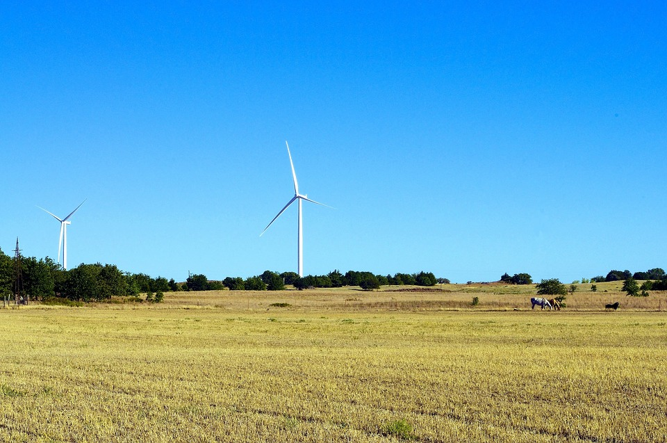 Oklahoma Wind And Horse Power, Wind, Horses, Animal