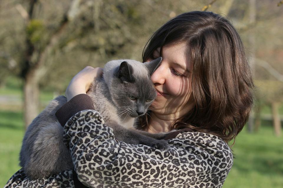Portrait, Young Woman, Cat, Nature, Human, Animal