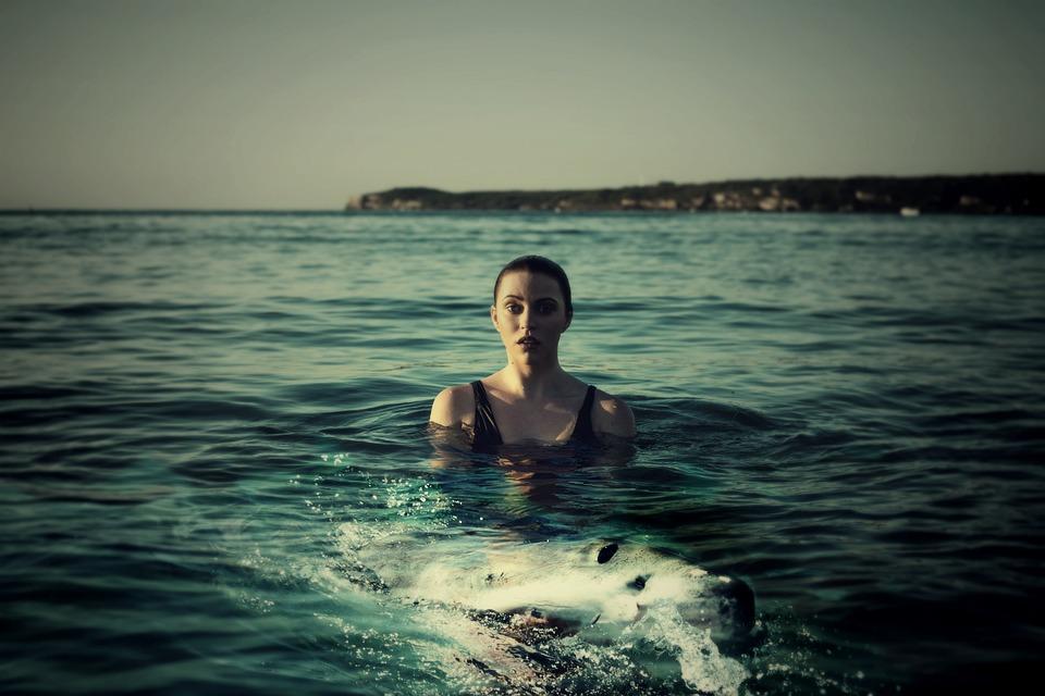 Woman, Sea, Hai, Shark, Fish, Animal, Swim, Water, Girl