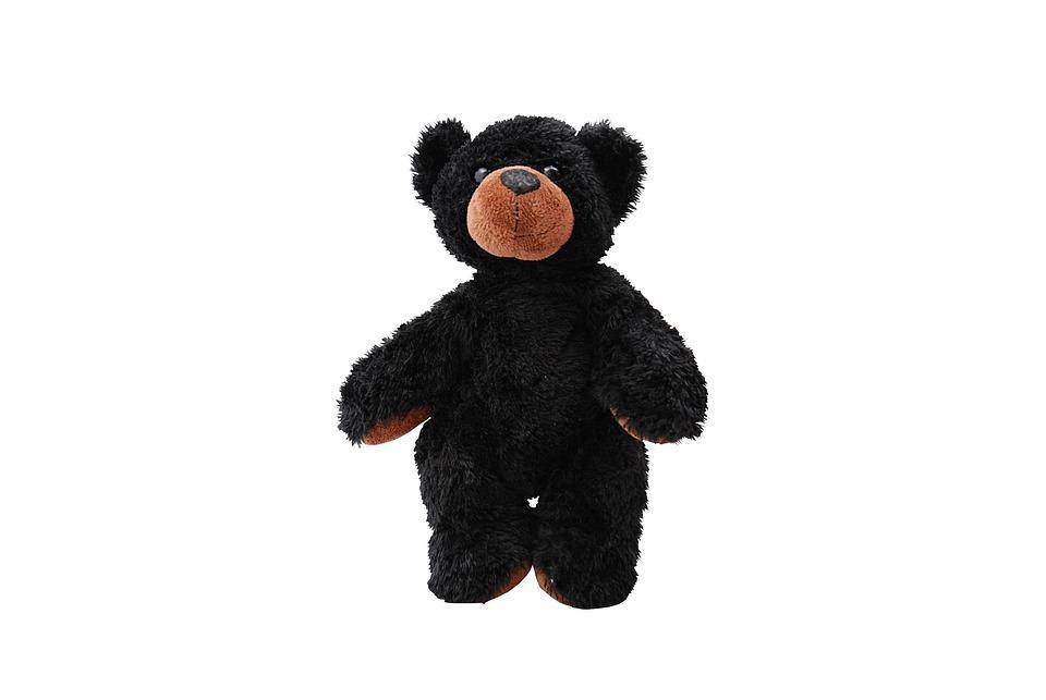Toy, Teddy, Animal, Cute, Isolated, Bear