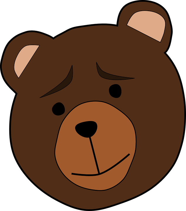 Animal, Bear, Face, Thinking, Worried, Mammal, Brown