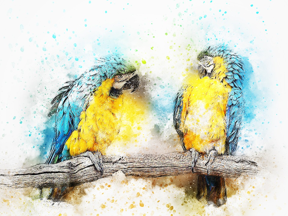 Free photo Animal Vintage Bird Art Abstract Parrot Color - Max Pixel