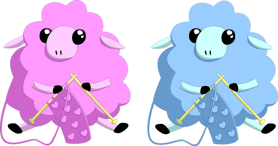 Knitting, Sheep, Wool, Blue, Pink, Animal, Cattle
