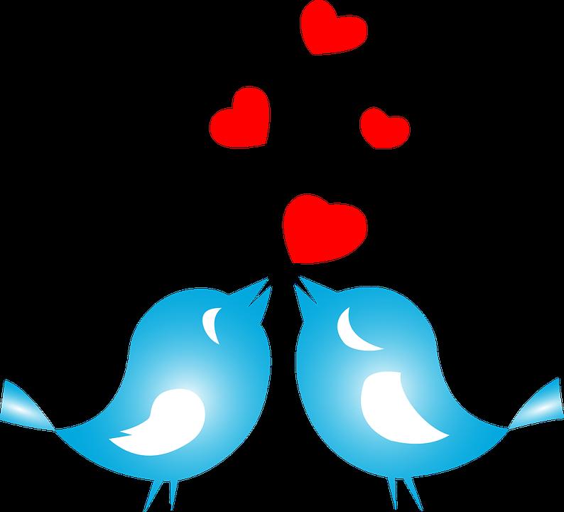 Love, Birds, Animals, Flying, Hearts, Romance, Couple