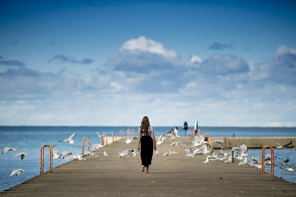 Animals, Birds, Clouds, Gulls, Ocean, Person, Pier, Sea