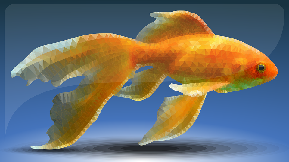 Fish, Low Poly, Goldfish, Animals, Abstract Art