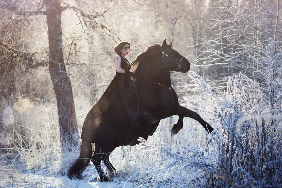 Girl, Winter, Animals, Portrait, Nature, Man, Horse