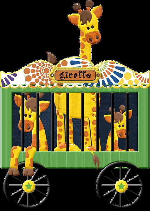 Animals, Giraffe, Circus, Zoo, Wildlife, Spotted