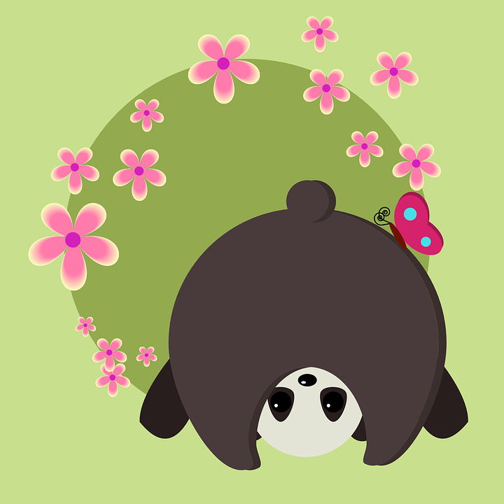 Panda, Tail, Animals