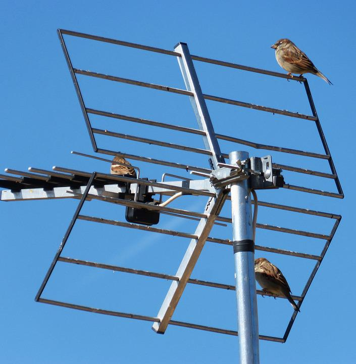 Antenna, Sky, Sparrows, Telecommunications, Tv