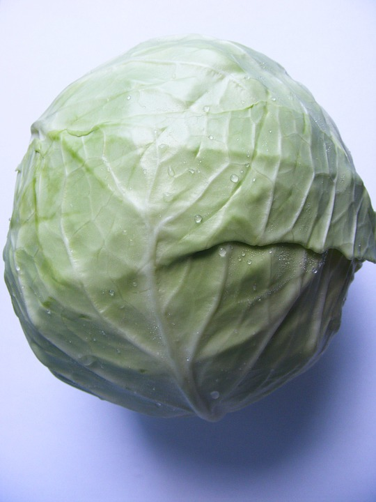 Anticancer, Antioxidant, Cabbage, Sulforaphane