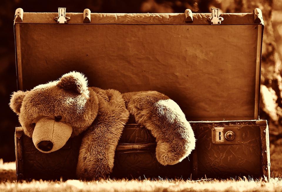 Luggage, Antique, Teddy, Sepia, Soft Toy