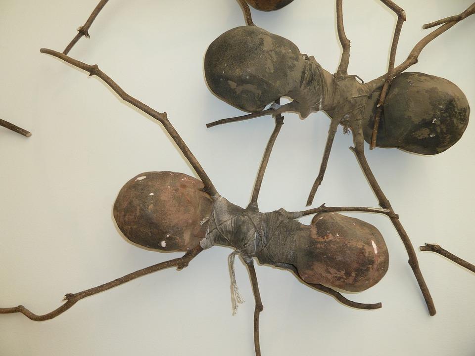 Ants, Wooden Ants, Ant Art