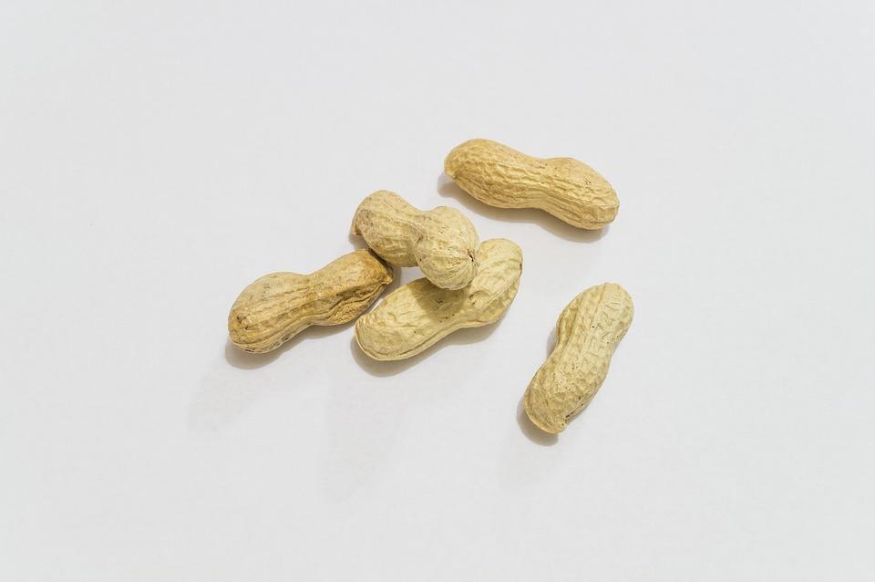 Peanuts, Aperitif, Nuts